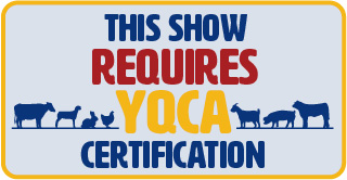 This show requires YQCA certification
